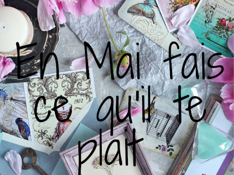 en-mai-fais-ce-qu-il-te-plait-1D2805C21-6EF3-9A01-F509-D4F33A41A700.png